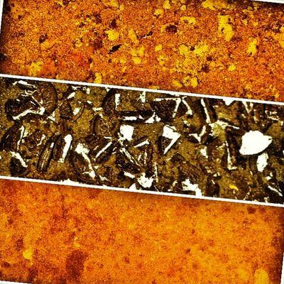 Layers of Diabetes. Refrigerator Cake. Chipsahoy Oreo Honeygrahams Instaba