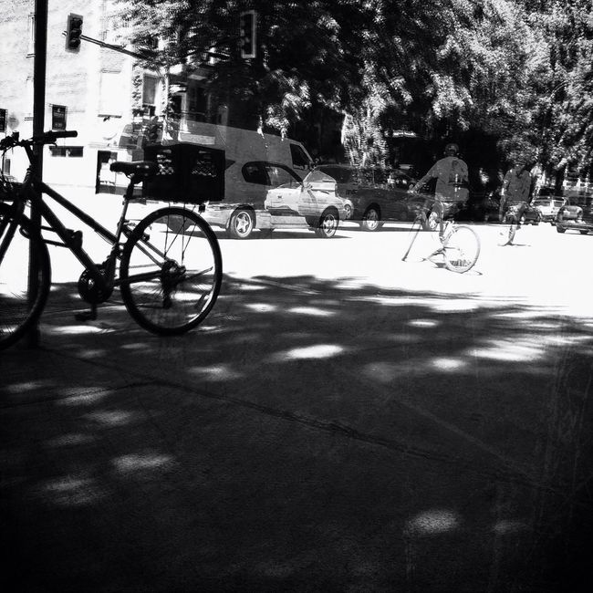 NEM Black&white