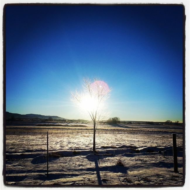 Good Morning! Snow Mornings Hello World Colorado