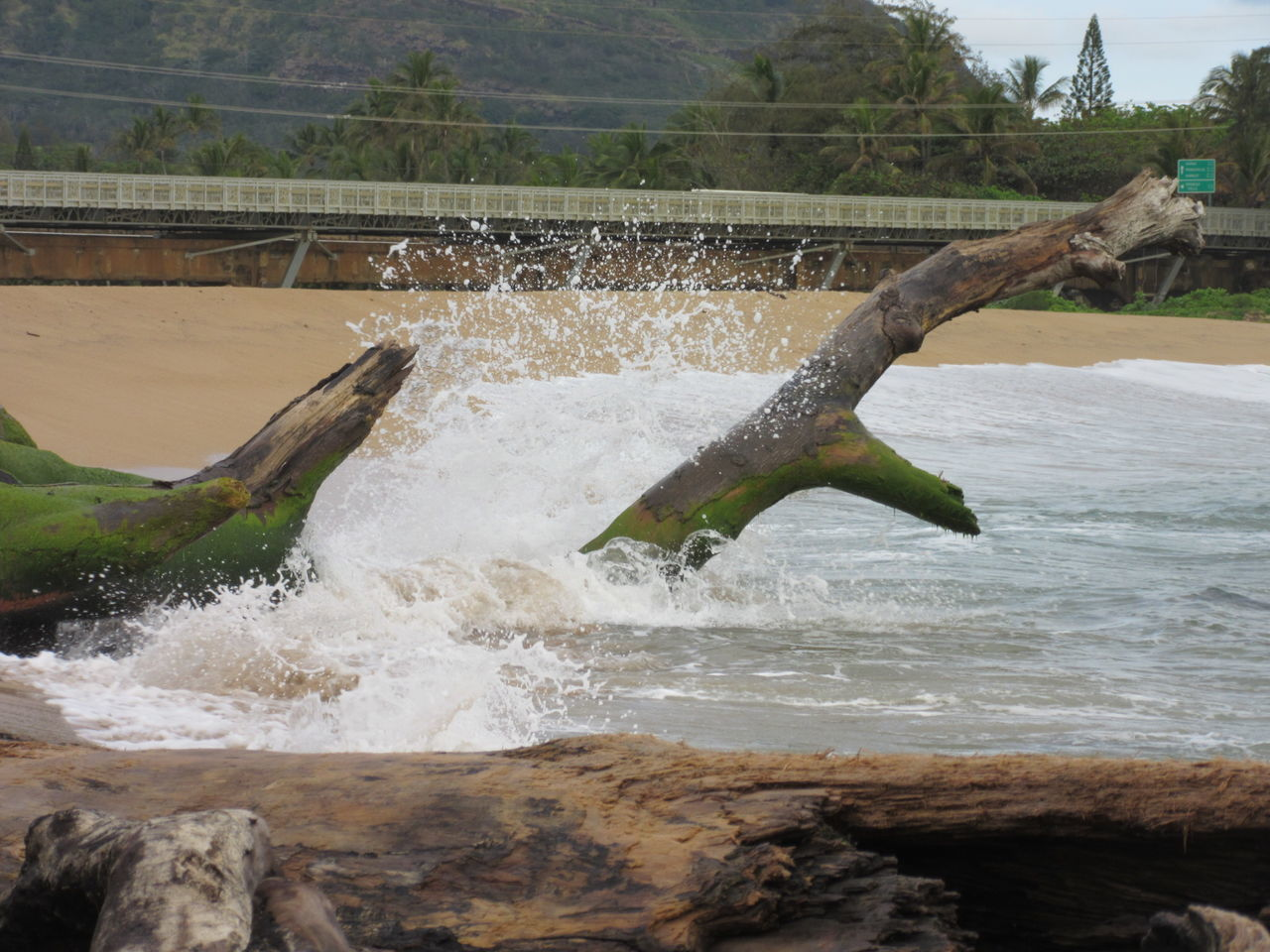 Splashing Water Motion Spraying Outdoors Tree Beauty In Nature Power In Nature Kauai, Hawaii Driftwood