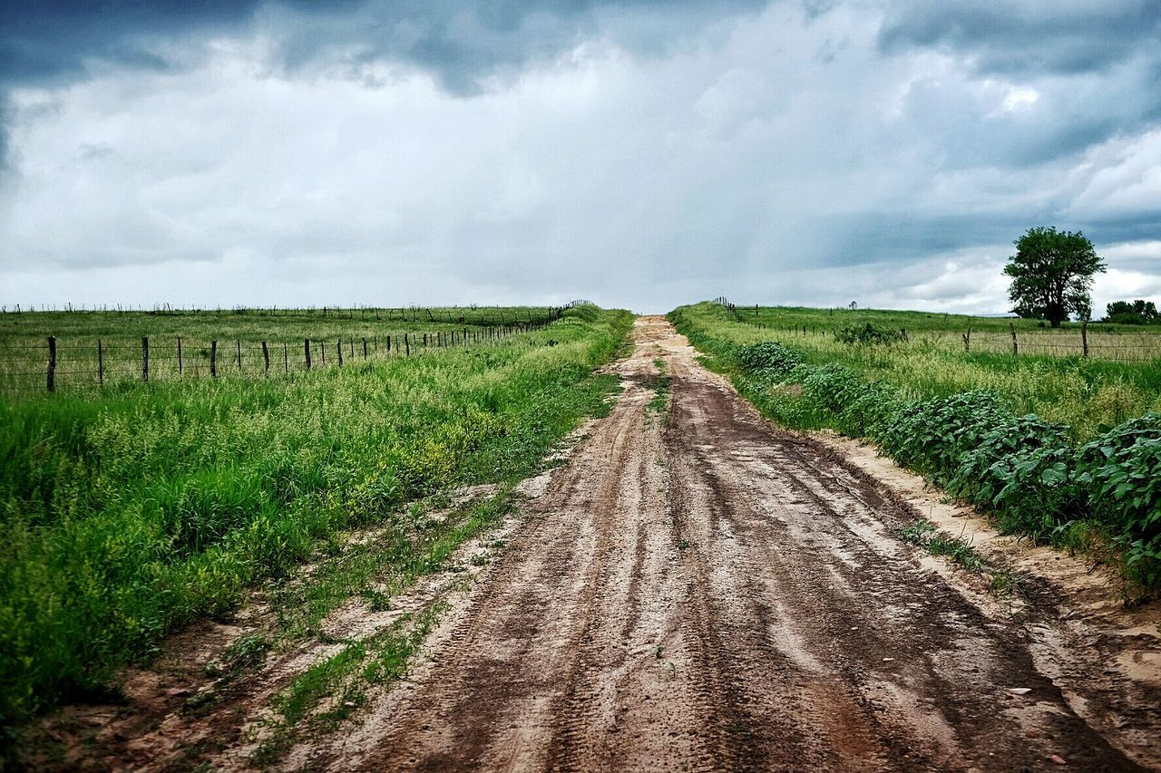 Dirt Road Farm Life In The Middle Of Nowhere Nebraska Green Pastures Rural Exploration Rural Landscape Rural Scenes Color Photography Polarizing Filter