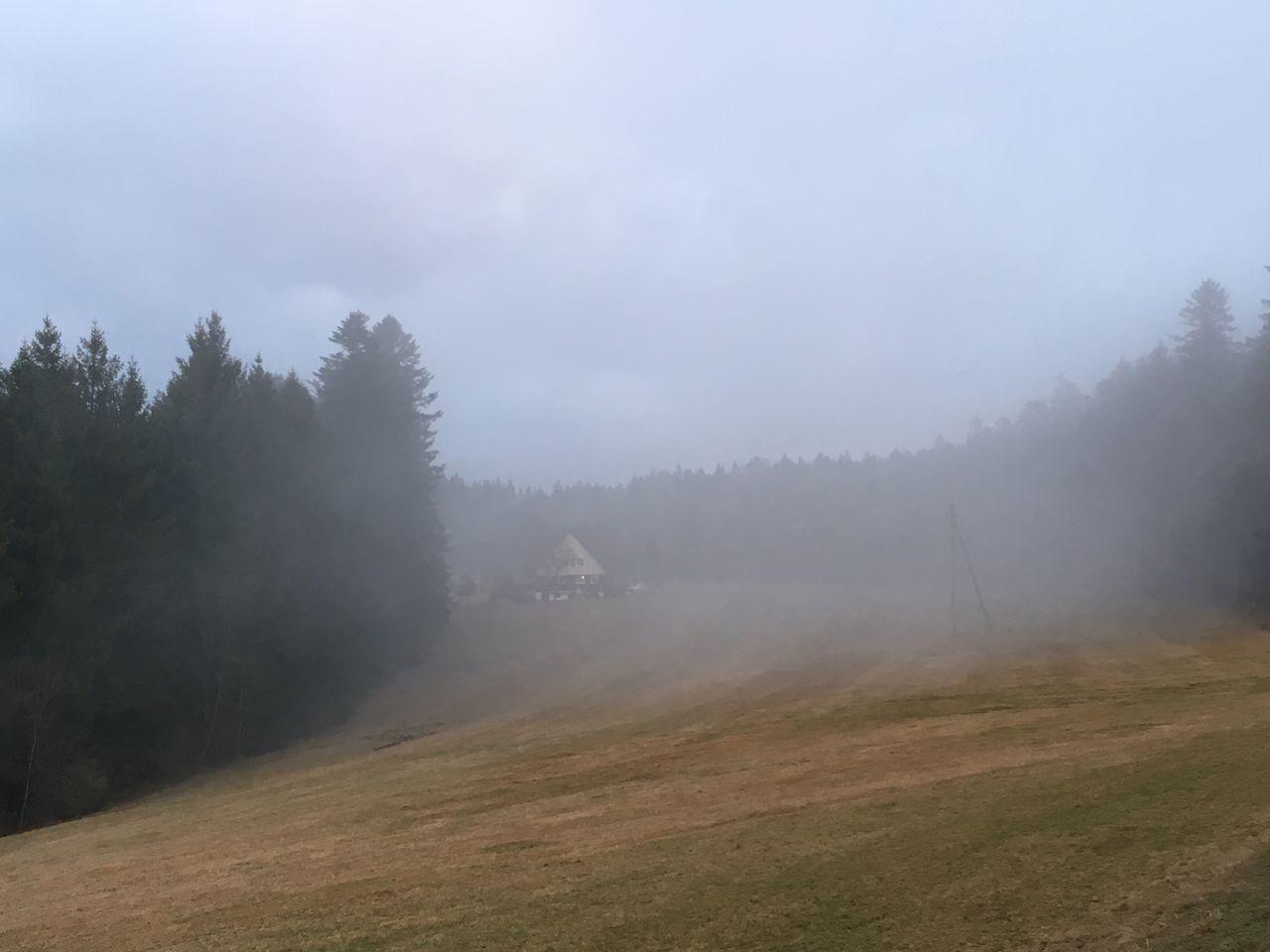 Nebel über den Schwarzwaldhöhen 15246