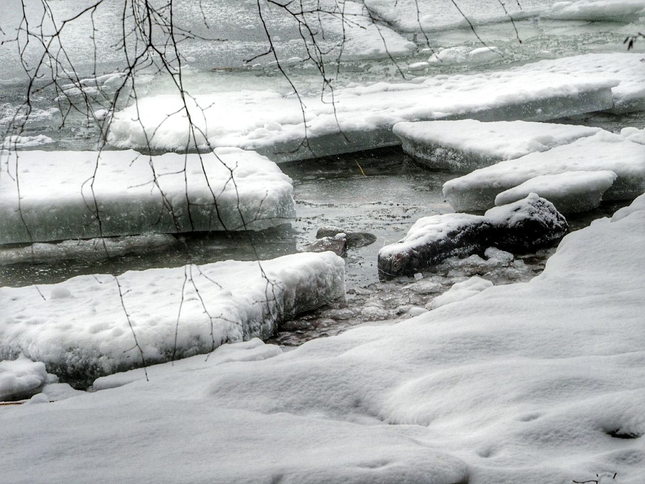 Nature Outdoors Tranquility Ice Extreme Weather Winter Time Winter Nature Outside Frozen Snow Cold Temperature Winter Beauty In Nature Lake Icedwater