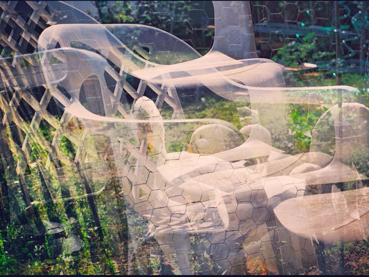 Multiple Exposures at my house, in San Francisco by Koduckgirl