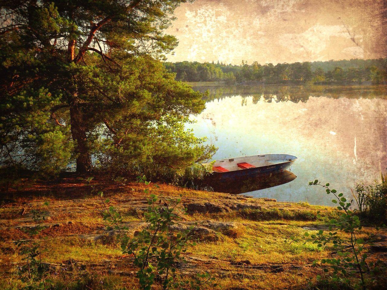Boat at lakeshore