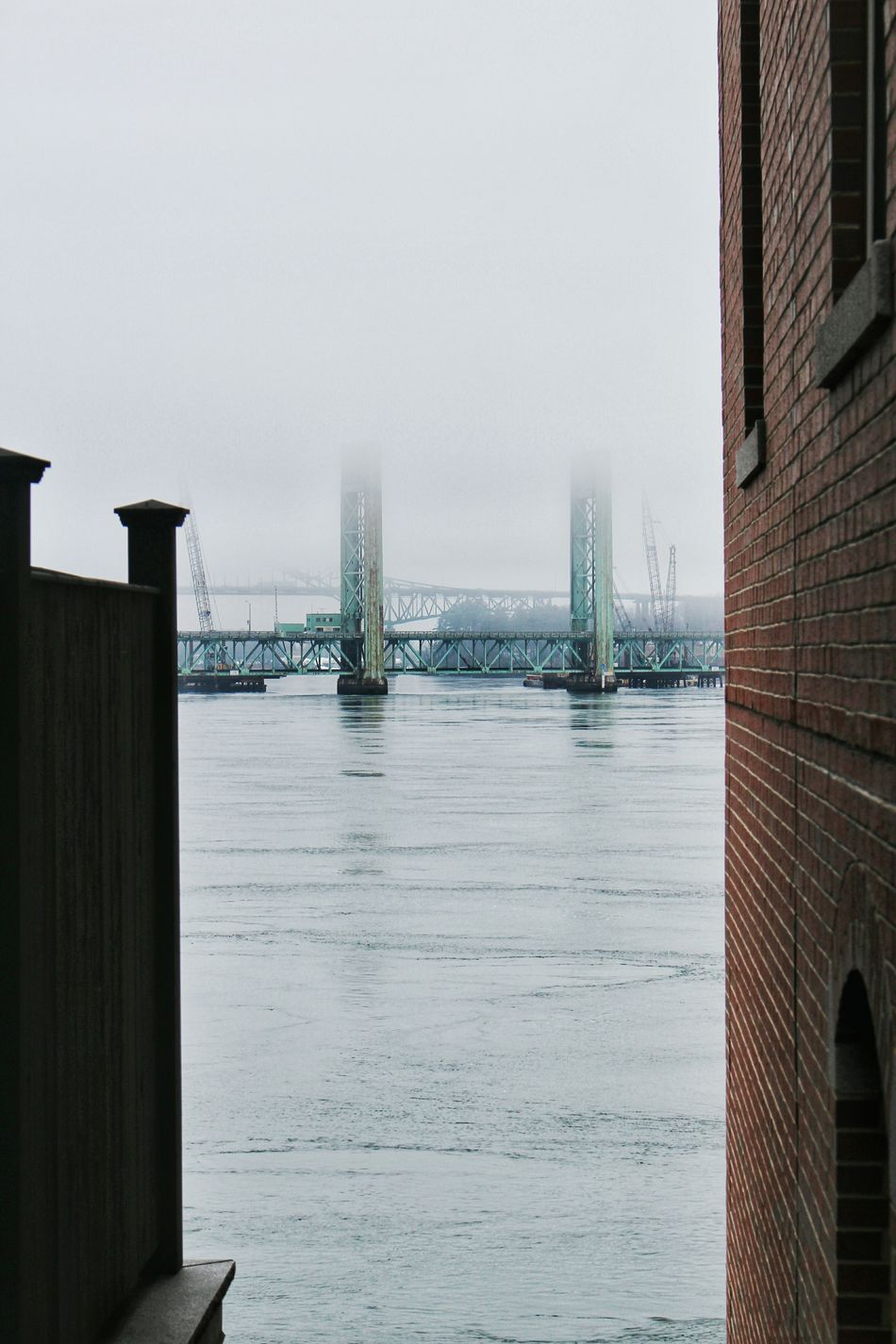 beautiful foggy scenery