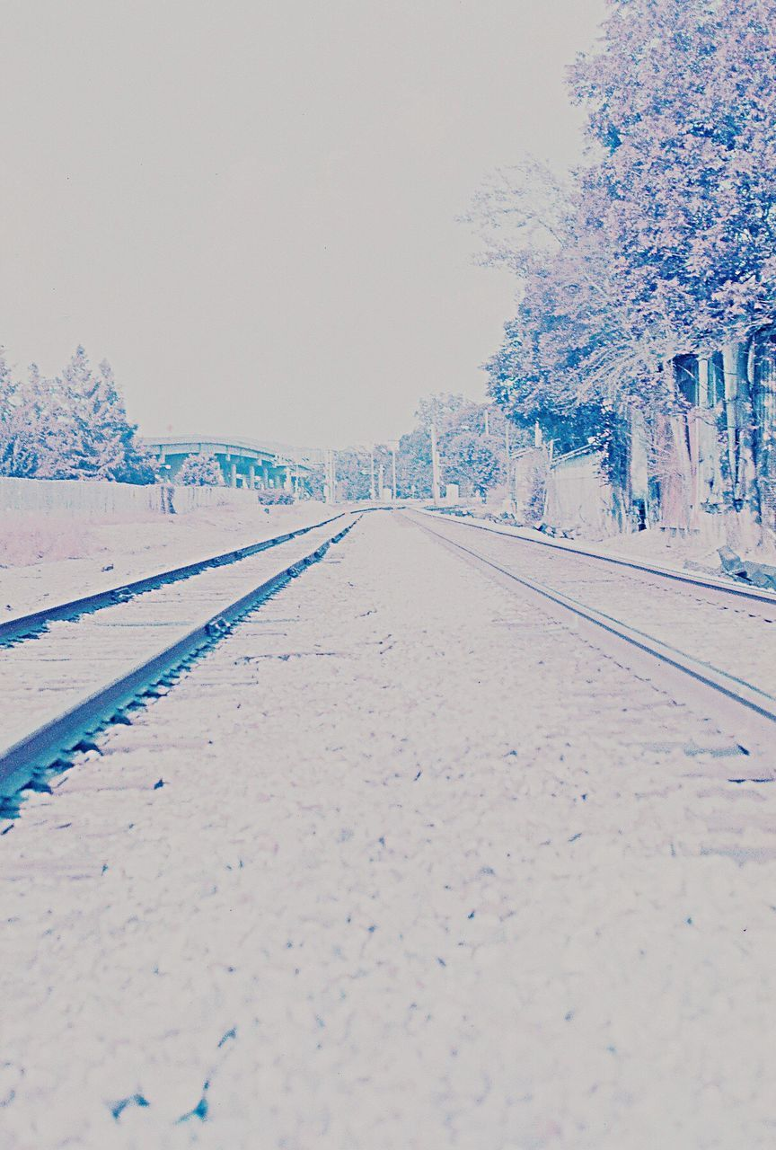 snow, cold temperature, winter, nature, tree, day, outdoors, the way forward, transportation, clear sky, scenics, no people, beauty in nature, tranquility, tranquil scene, railroad track, road, sky