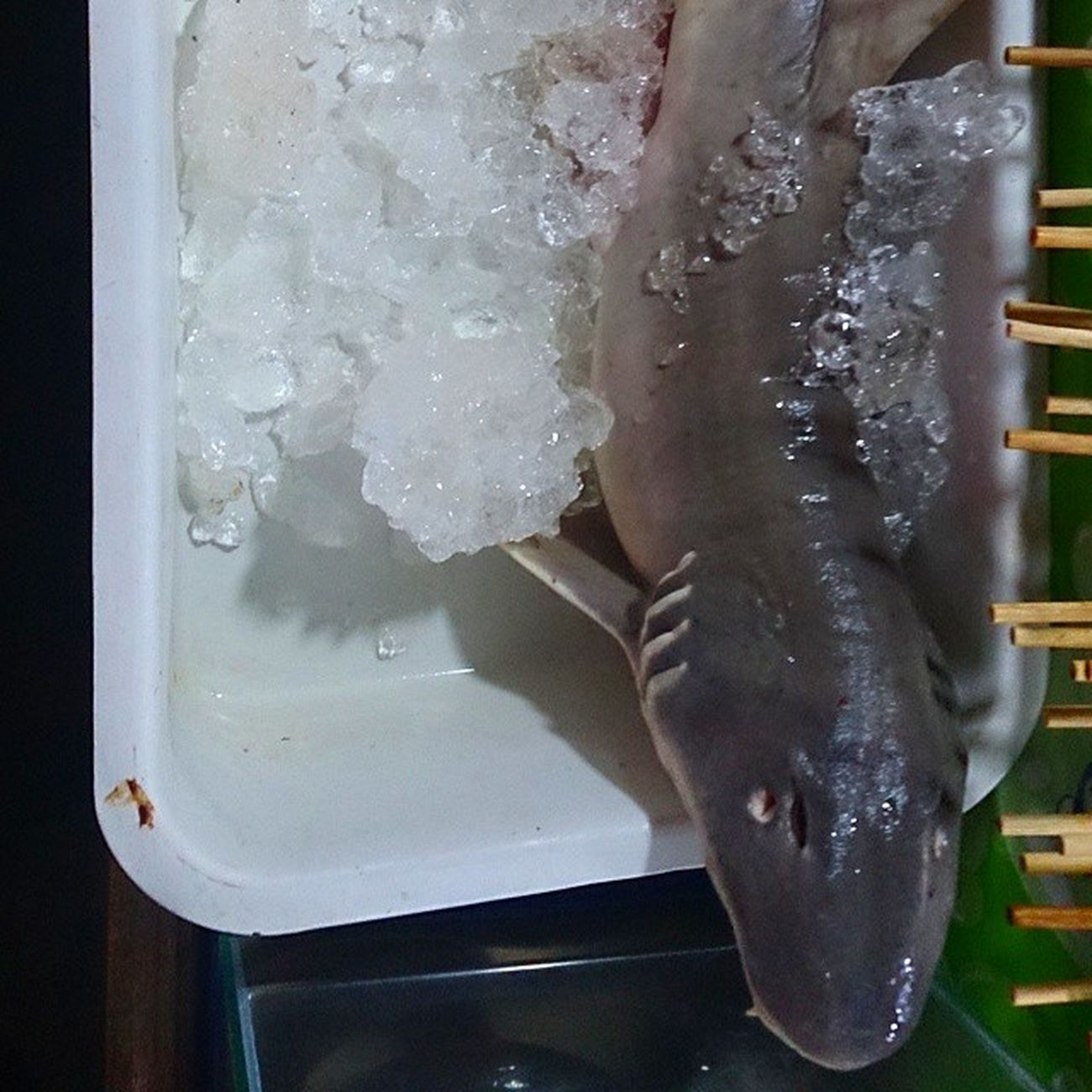 АкулаЕда вкусно нестрашно если не сфоткал-значит, не съел...sharkfood