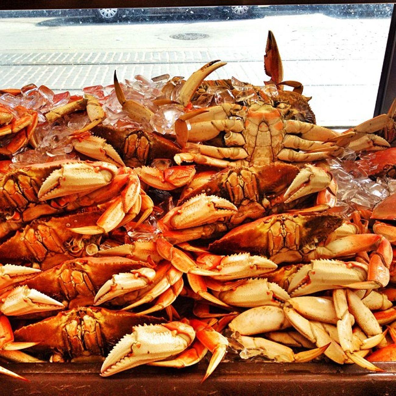 Crab SF Fullcolor Delicius