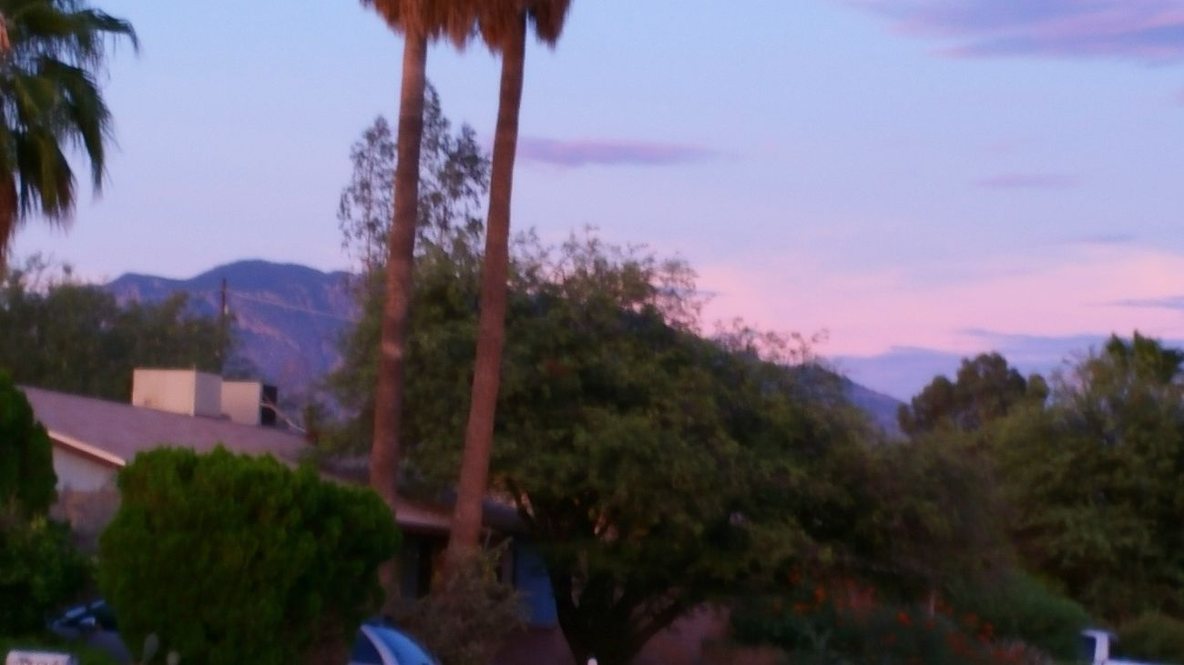 Sunset In Tucson Enjoying Life