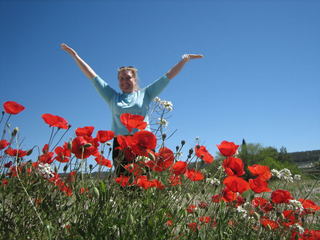 Happy Woman Happy Person Outdoors Amapolas Rojas Nature Growth Fragility Beauty In Nature Freshness Petal мак мак растение Amapolas Clear Sky Flower Field Field Low Angle View Clear Blue Sky Poppy Poppy Flower Amapola Red Flower Blooming Plant Flower