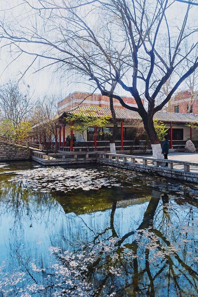 园林 China Garden Enjoying Life 手机摄影 风光