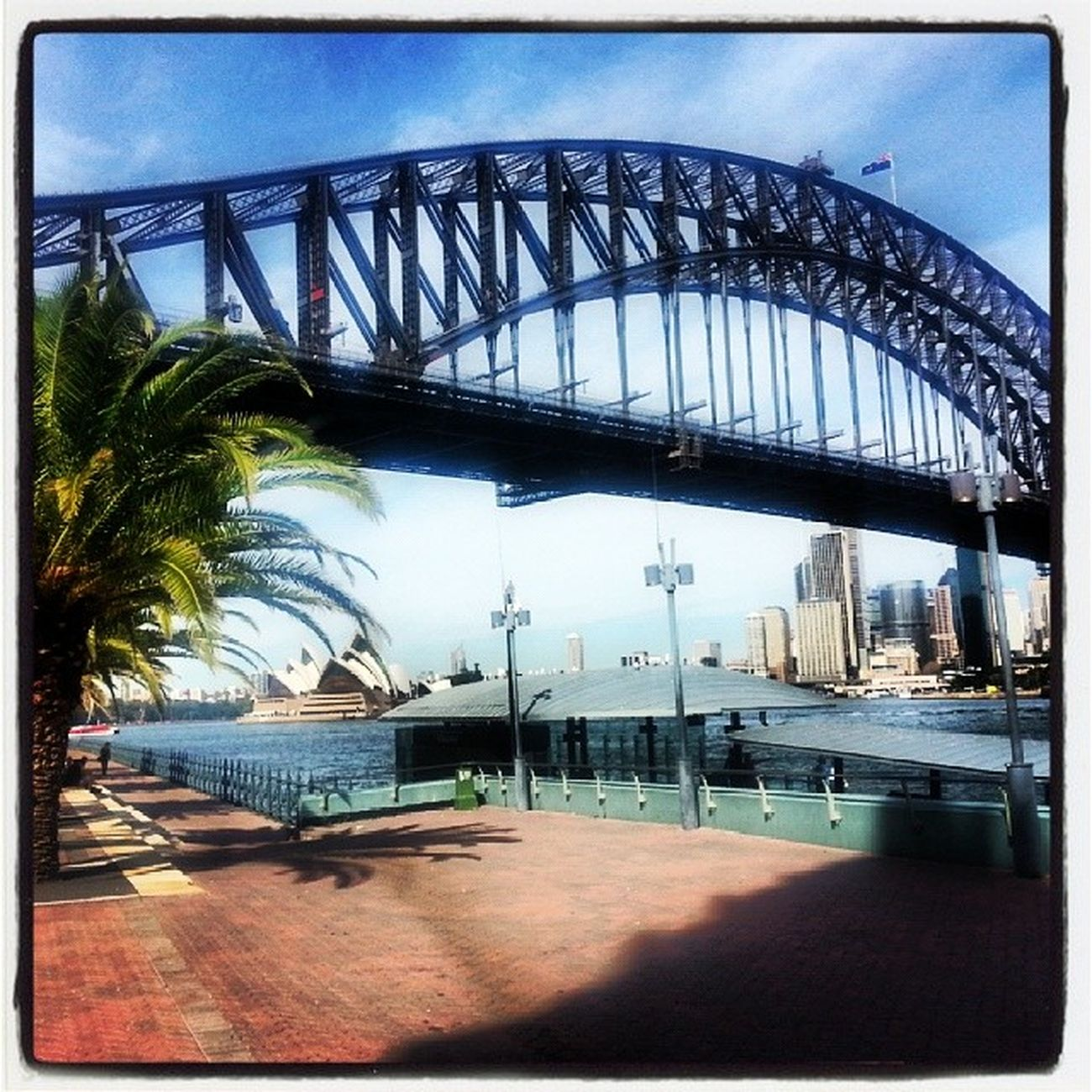 Sydney Harbour Bridge and the Opera House Justhadto Damnforeigners Imanimmigrant LOL beautiful iheartoz