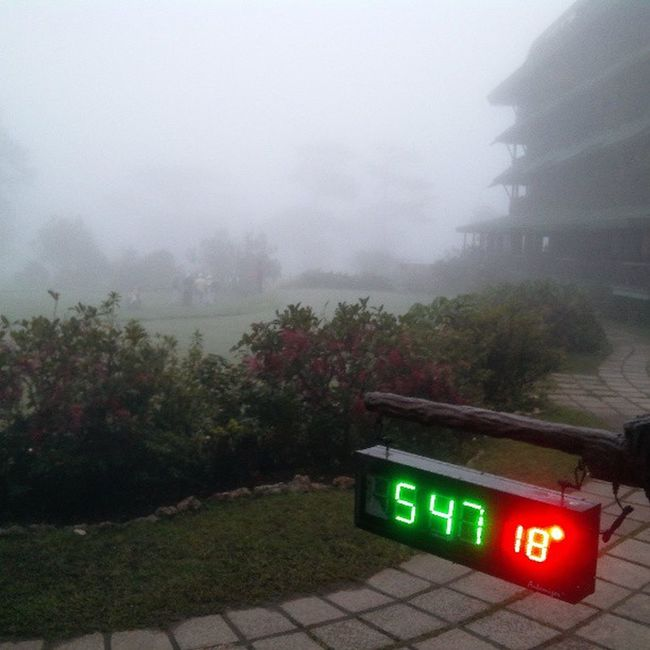 Fog again at Baguiocountryclub Bcc Baguiocity itsmorefuninthephilippines cold golfcourse instaplace instalike instaweather cool blessed instagram