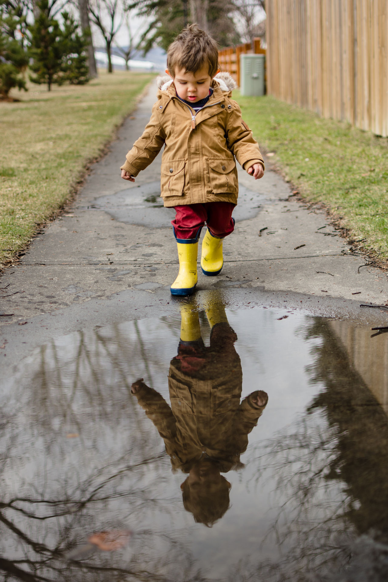 Little boy having fun in a rain puddle Boy Casual Clothing Child Childhood Day Fun Gumboots Jacket Lifestyles Outdoors Puddle Rain Boots Rainy Reflection Season  Spring Toddler  Water Wellington Boots Yellow