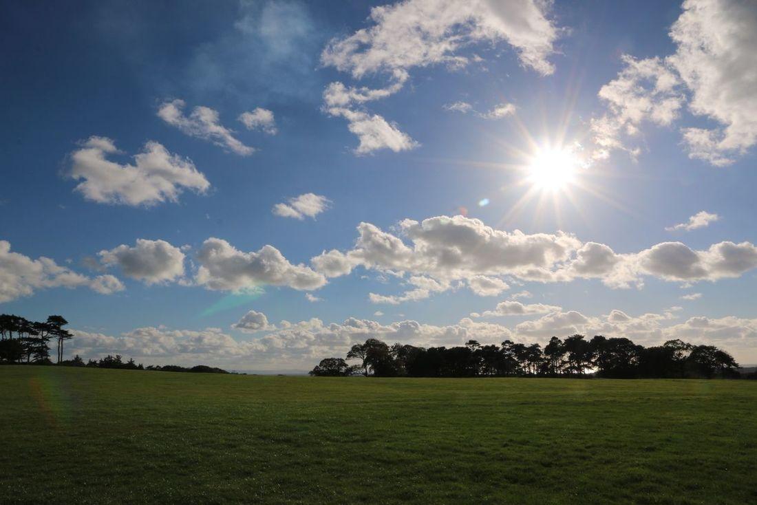 Margam Park Port Talbot Canon 70d Sun