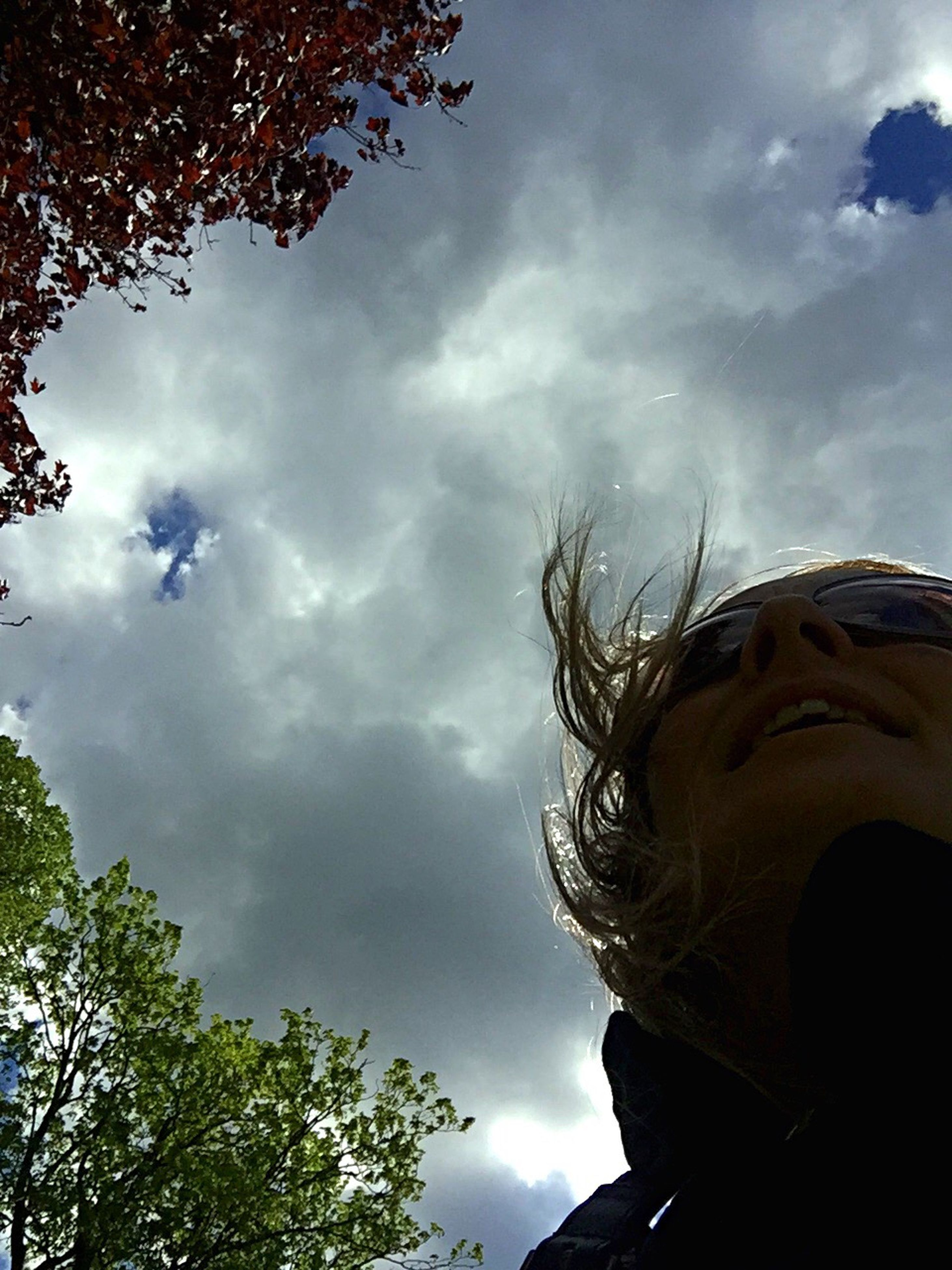 cloud - sky, sky, low angle view, day, tree, outdoors, childhood, nature, statue, no people, building exterior, beauty in nature