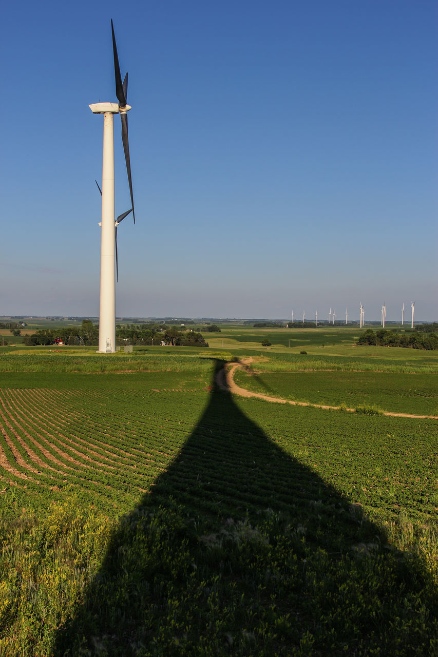 field, day, outdoors, wind power, grass, no people, rural scene, wind turbine, beauty in nature, nature, scenics, agriculture, fuel and power generation, tranquility, landscape, clear sky, windmill, industrial windmill, sky
