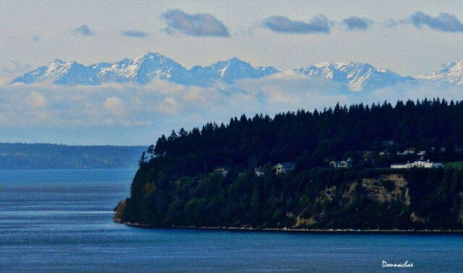 Nature Landscape Enjoying The View Photography Nikon PNW Puget Sound
