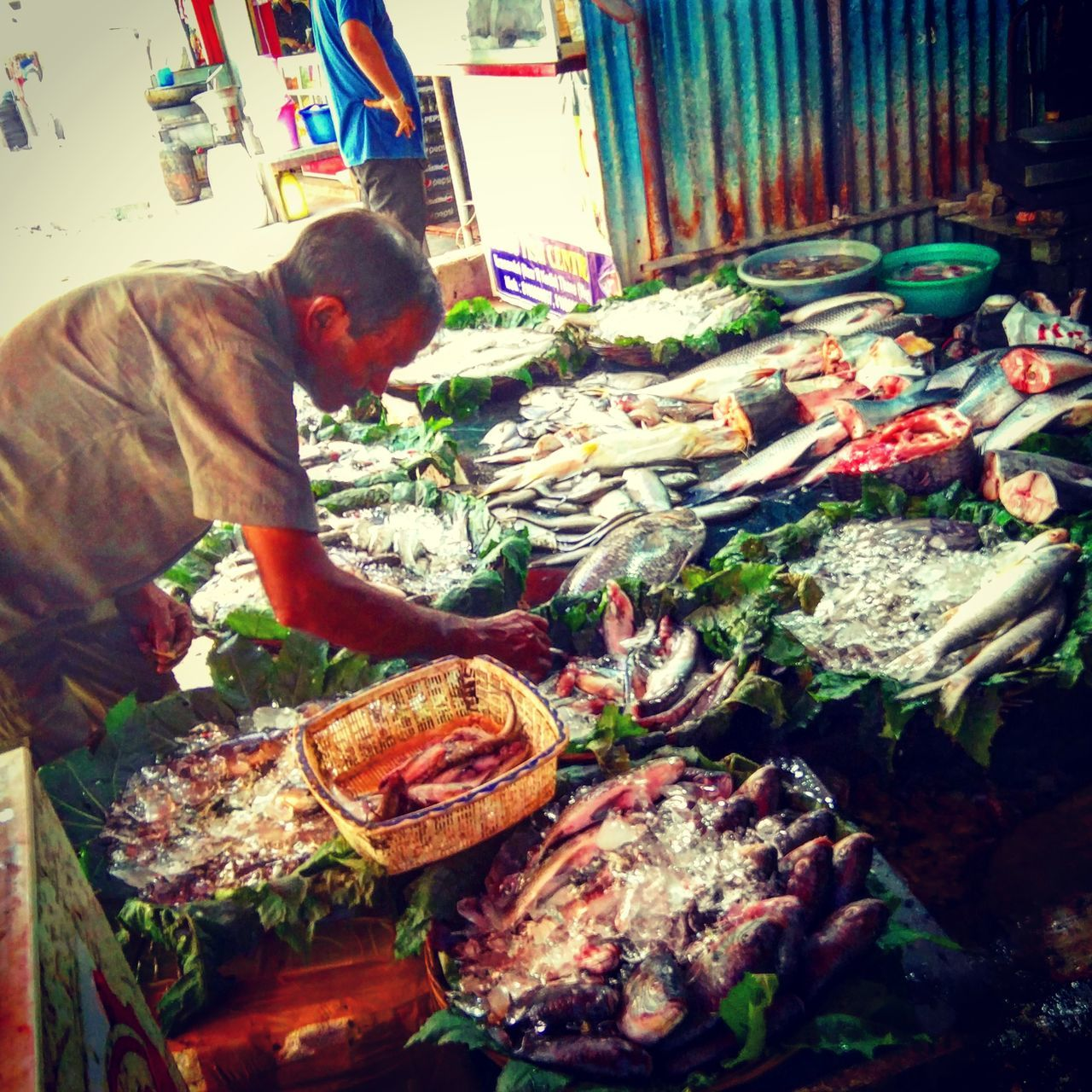 Eat Fish, Eat healthy! Food Food And Drink Selling Market Men Street Market Market Stall Real People Occupation Working Cultures One Person Fish Seafoods
