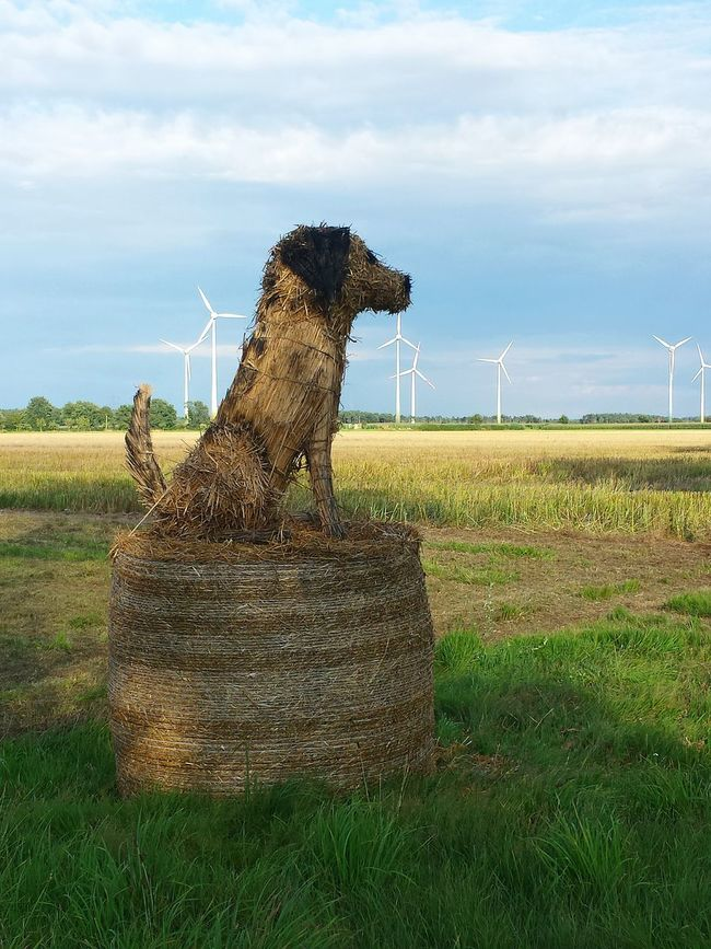 Home Is Where The Art Is Artificial Dog Against Blue Sky Energy Tower Straw Dog on Straw Bale Art, Drawing, Creativity Arts Culture And Entertainment Artistic Expression Arts And Crafts Art Installation Cute Art Art Is Everywhere