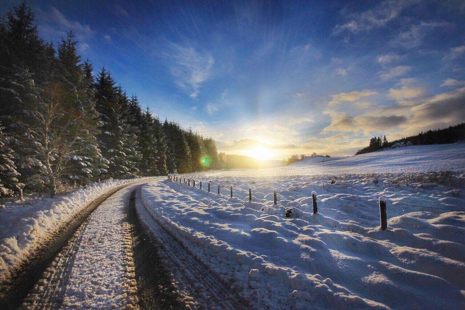 Snowwy Roads Winterroad Snowwyroad Snowroad Winterscene Cold Temperature Snow Winter Sunlight Nature Beauty In Nature Sky Landscape Outdoors Sunset Scenics Sun Field Tranquil Scene Sunbeam No People Day Tire Track Tree
