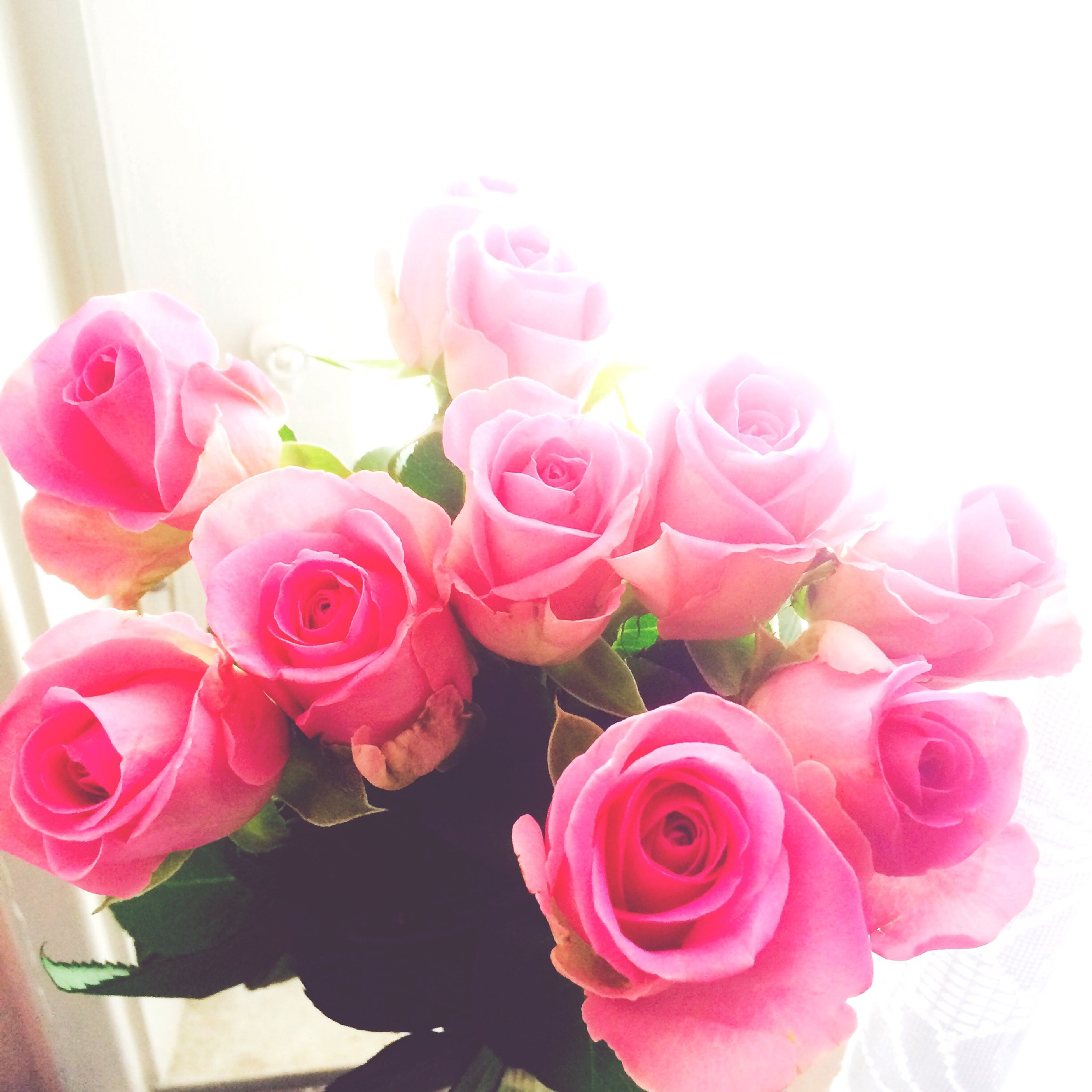 flower, rose - flower, petal, freshness, fragility, indoors, pink color, flower head, beauty in nature, vase, rose, close-up, bouquet, nature, flower arrangement, bunch of flowers, blooming, home interior, growth, pink