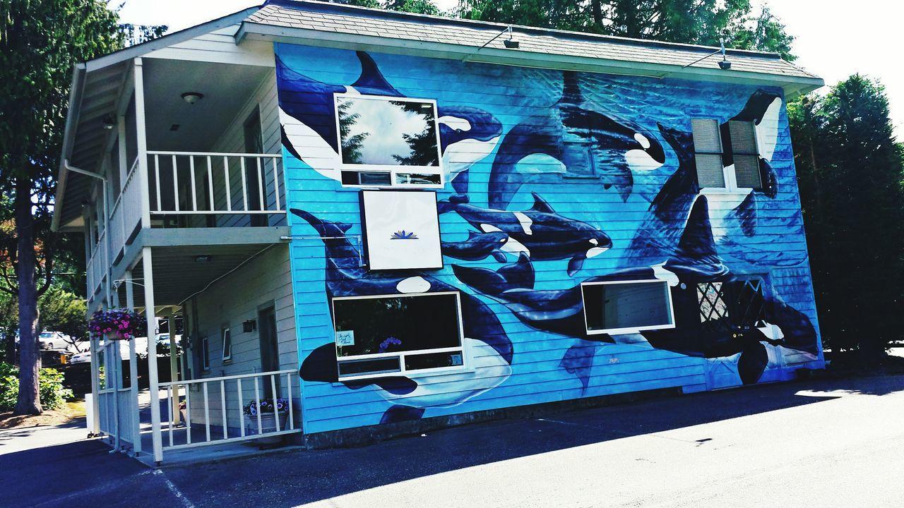 Wall Art Wall Painting Gig Harbor Washington State Orca Orcas