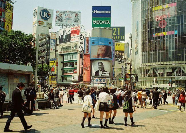 Shibuya Office Building City Street City Shibuya,Tokyo 渋谷駅前スクランブル交差点 Japan 渋谷