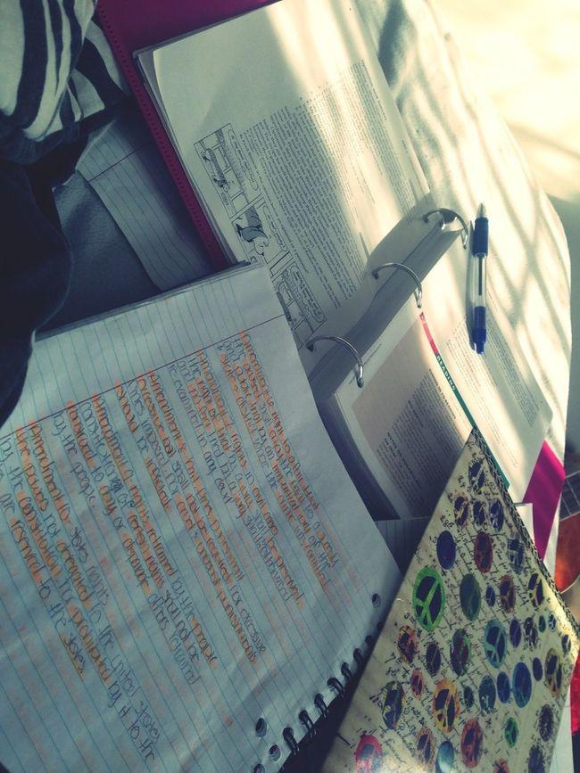 Bored Doing Homework