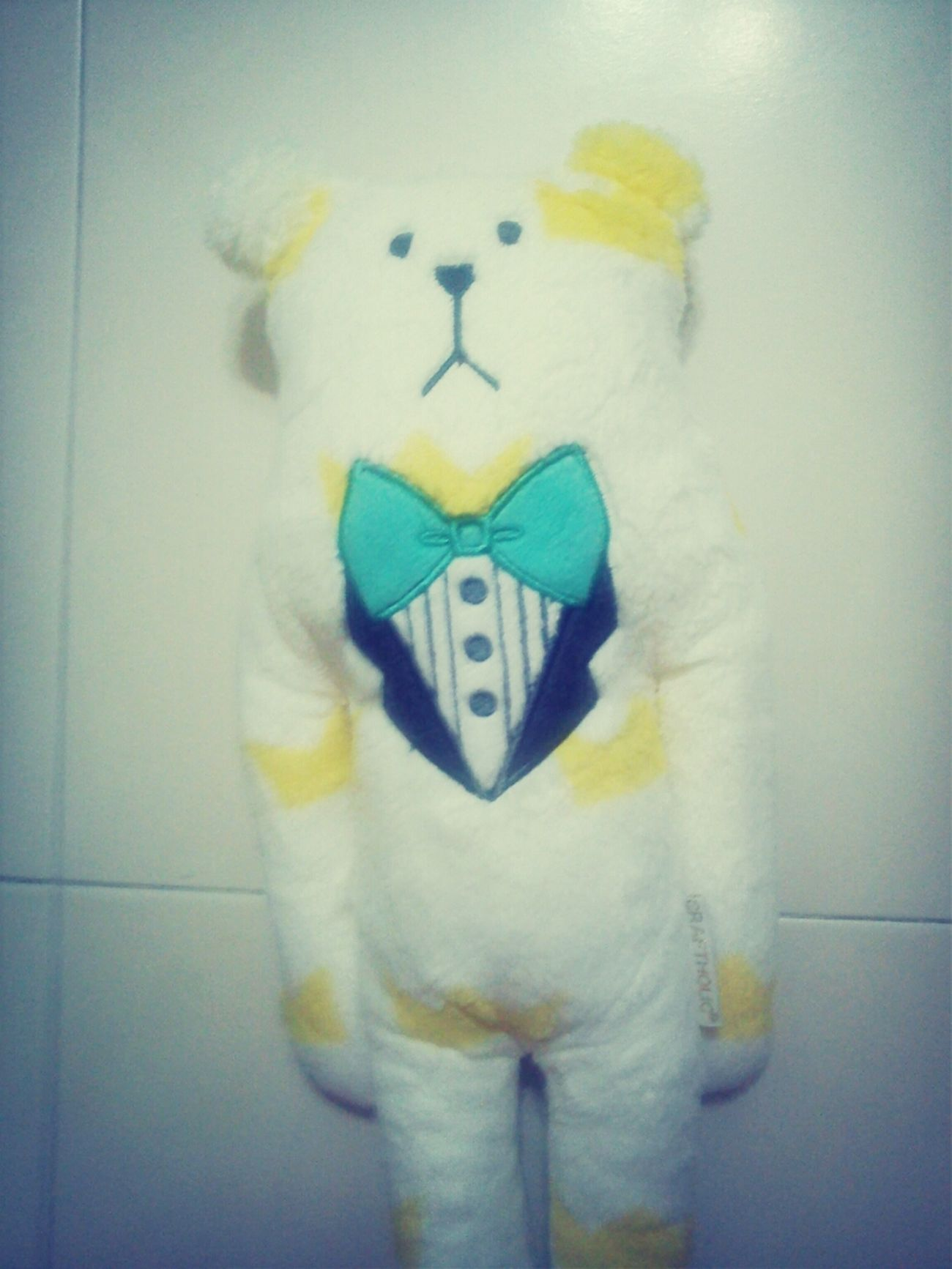 My Mom Bought Me A New Cute Bear..ˋ▽ˊ