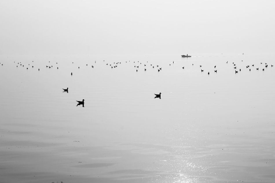 Blackandwhite Water_collection EyeEm Nature Lover Bw_collection