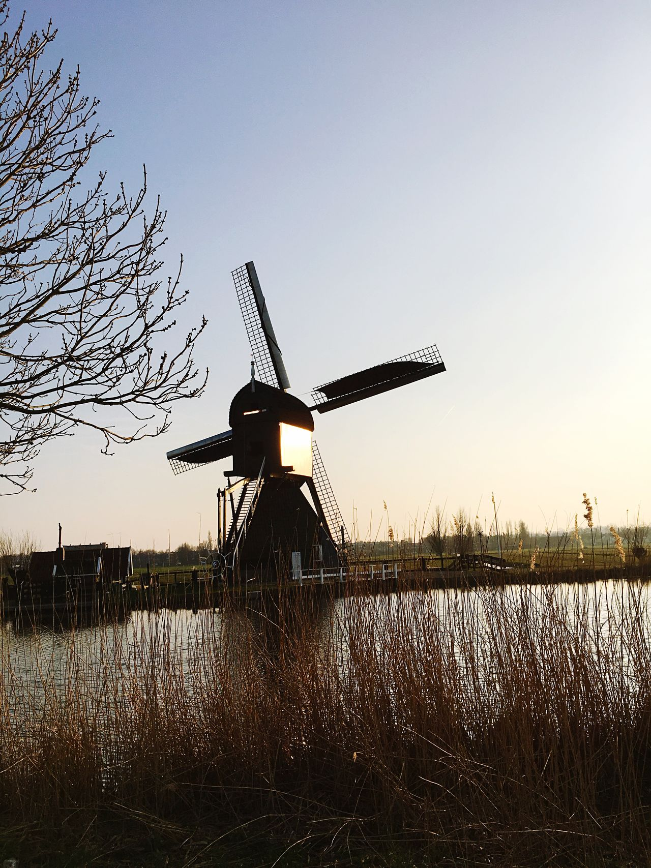 Environmental Conservation Fuel And Power Generation Renewable Energy Alternative Energy Wind Power Wind Turbine Built Structure Windmill Clear Sky No People Field Nature Outdoors Sky Grass Architecture Rural Scene Day Tree Technology