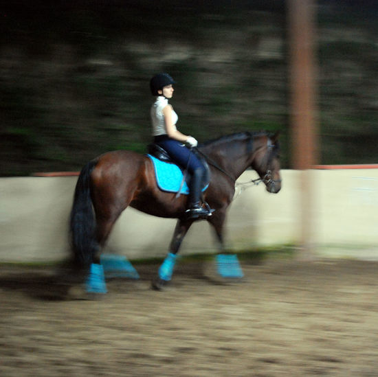 Activity Blurred Motion Competition Competitive Sport Domestic Animals Excitement Full Length Gambling Horse Horse Racing Horseback Riding Jockey Lifestyles Mammal Men Motion One Animal Outdoors Real People Riding Running Speed Sport Sports Race Sports Track