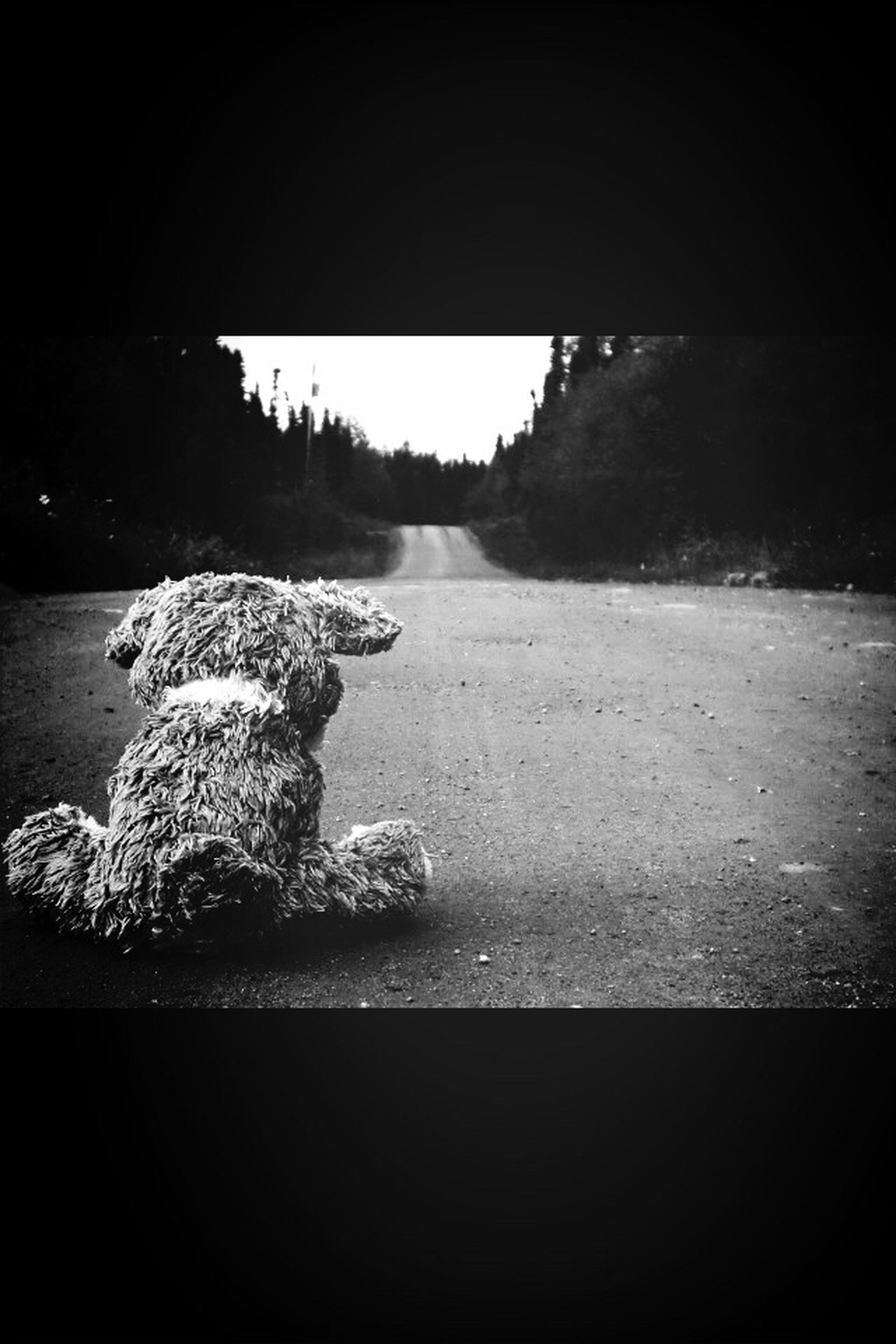 Sad, Lonely And Depressed World.