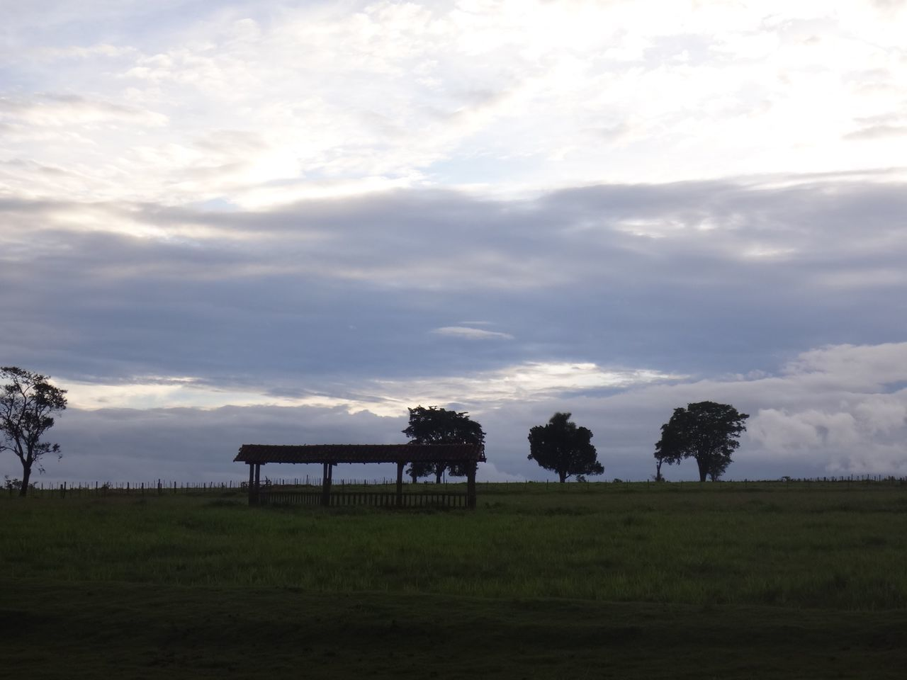 cloud - sky, sky, tree, nature, field, beauty in nature, scenics, tranquility, landscape, tranquil scene, grass, no people, outdoors, day, growth