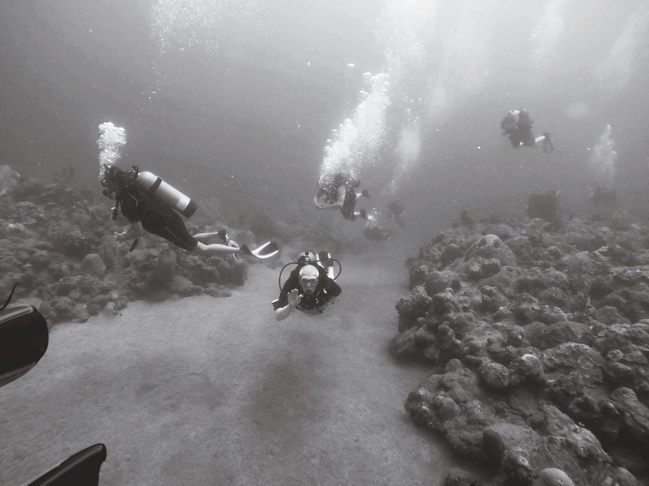 The Great Outdoors - 2017 EyeEm Awards Scuba in Saba Scuba Diving Underwater Water Sea Exploration Sea Life EyeEmNewHere