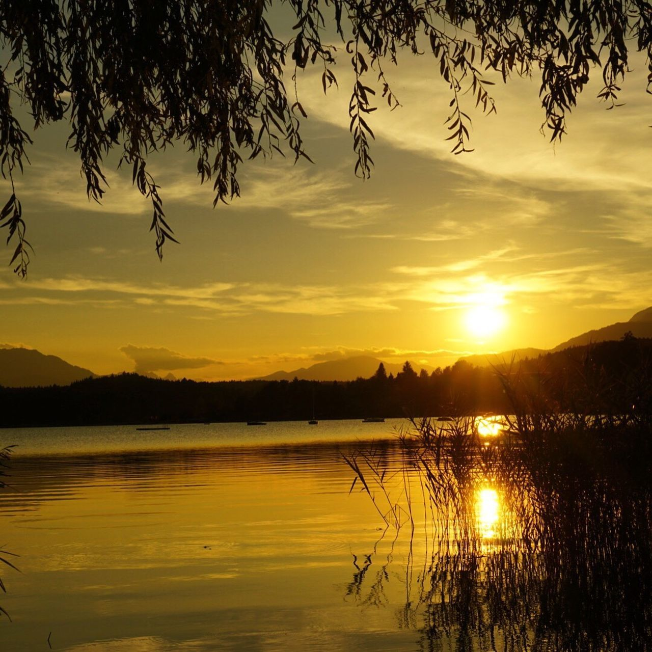 sunset, water, reflection, tranquil scene, scenics, lake, sun, tranquility, beauty in nature, tree, silhouette, idyllic, sunlight, nature, branch, calm, orange color, majestic, cloud - sky, sky, mountain, bright, non-urban scene, romantic sky, lens flare, vibrant color, tourism, no people, vacations