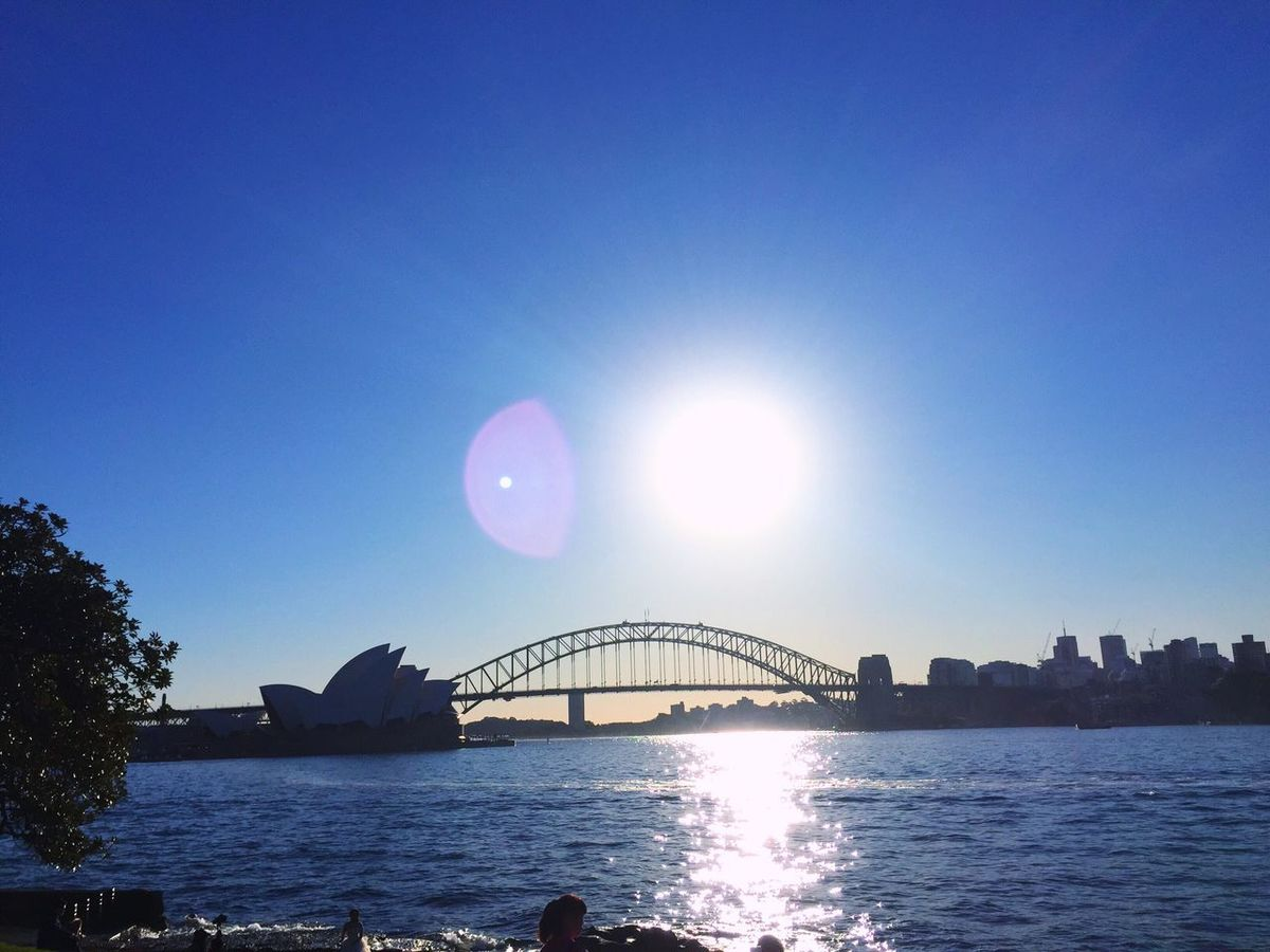 Taking Photos Travel Traveling Sydney Royal Botanic Gardens Garden Sydney Opera House Sydney Harbour Bridge Bridge Sea Sunshine Light Water Reflections IPhoneography