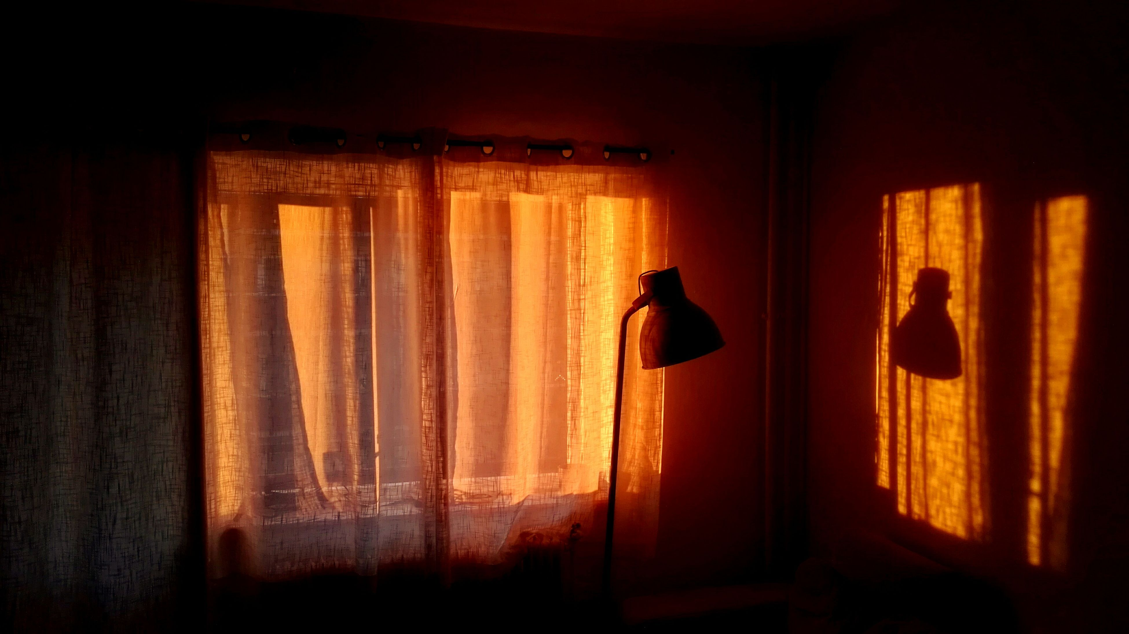 curtain, indoors, no people, drapes, home interior, illuminated, animal themes, day