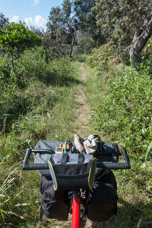 View of trail over bicycle handlebars loaded with luggage Bicycle Day Grass Green Green Color Growing Kickbike Luggage Outdoors Plant Tourism Trail Travel