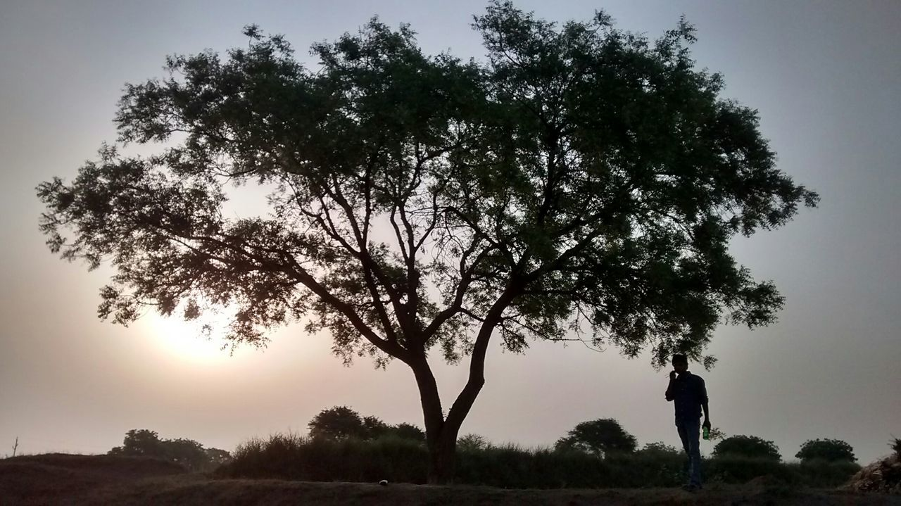 tree, growth, nature, field, landscape, outdoors, beauty in nature, scenics, full length, one person, sky, day, real people, clear sky, people