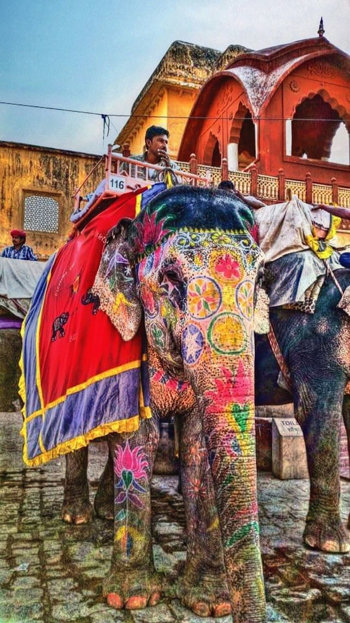 multi colored, elephant, architecture, built structure, cultures, real people, outdoors, low angle view, building exterior, spirituality, day, mammal, sky, one person, people