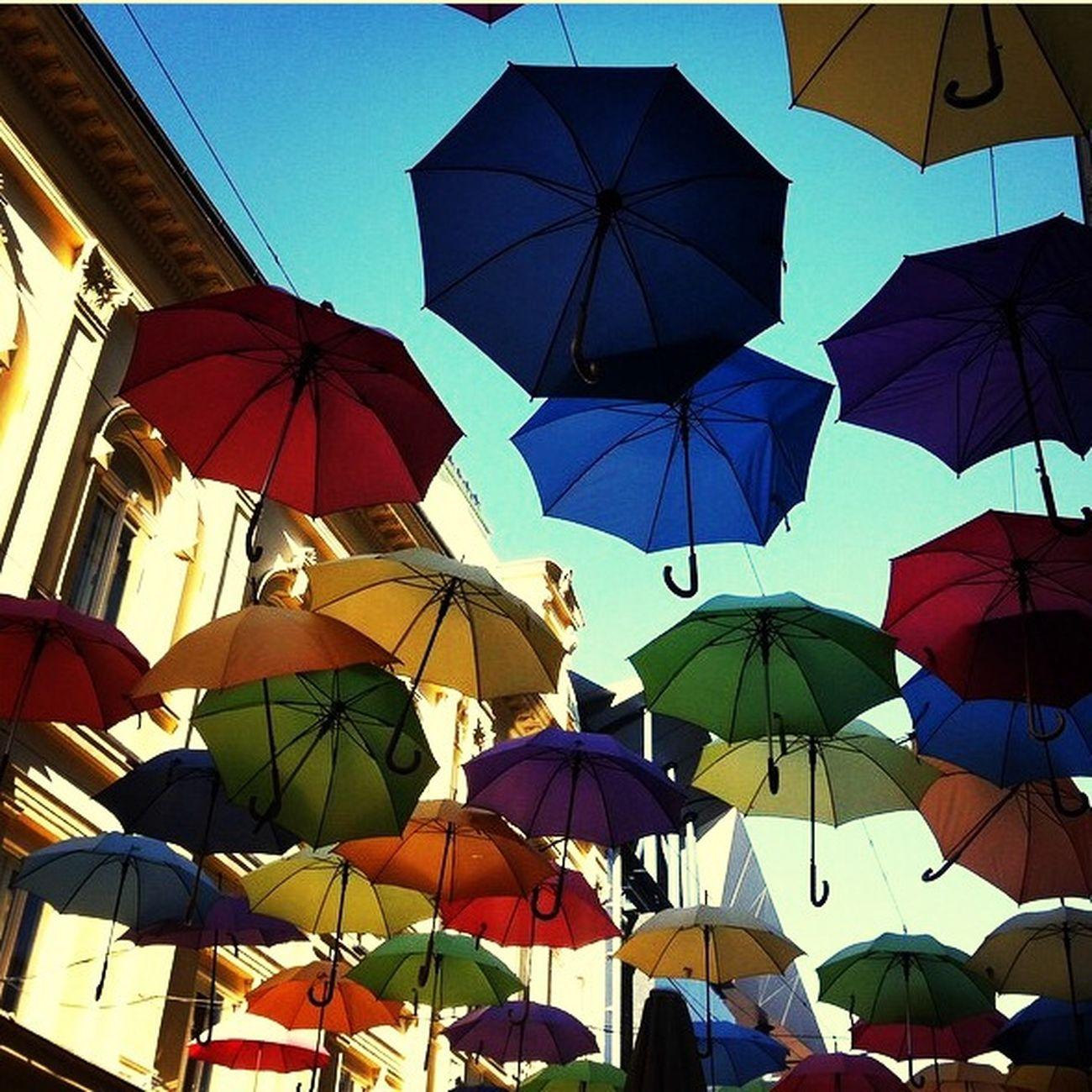 Belgrado Vacanzeodontoiatriche2014 Beautifulcity