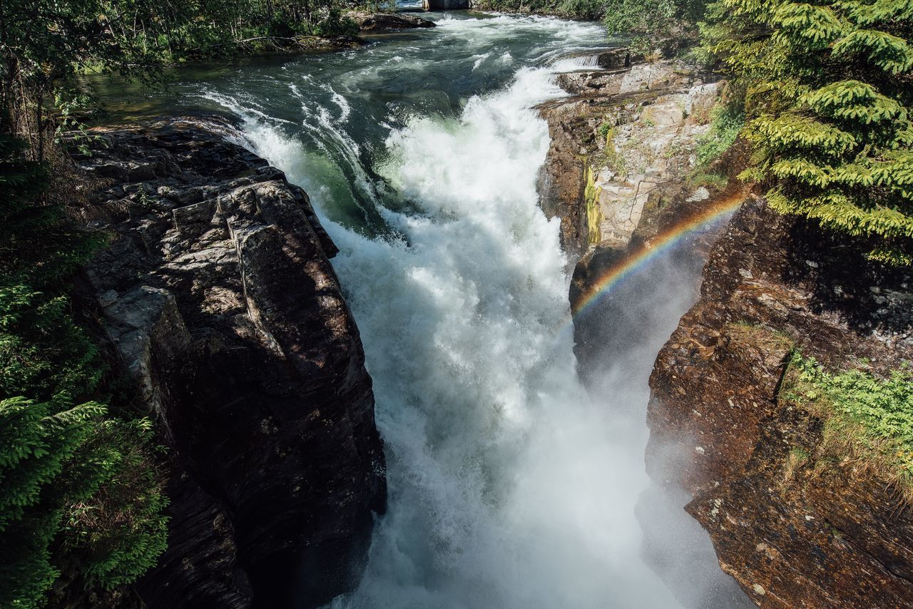 Beautiful stock photos of rainbow, Beauty In Nature, Day, Flowing Water, Forest
