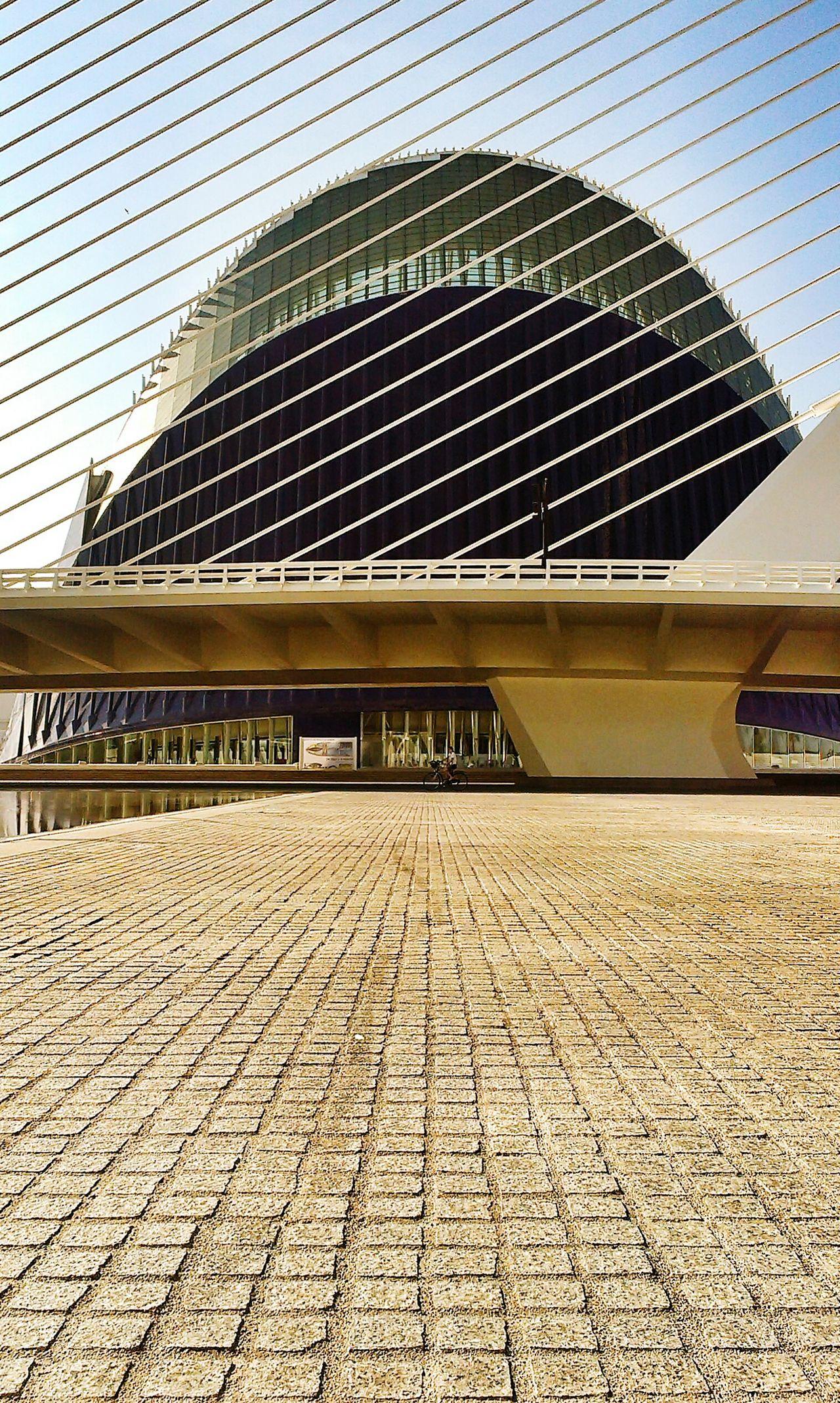 The Architect - 2015 EyeEm Awards Architecture Amazing Architecture EyeEm Gallery Architecture_collection EyeEm Best Edits EyeEm Best Shots EyeEm Best Shots - Architecture Valencia, Spain