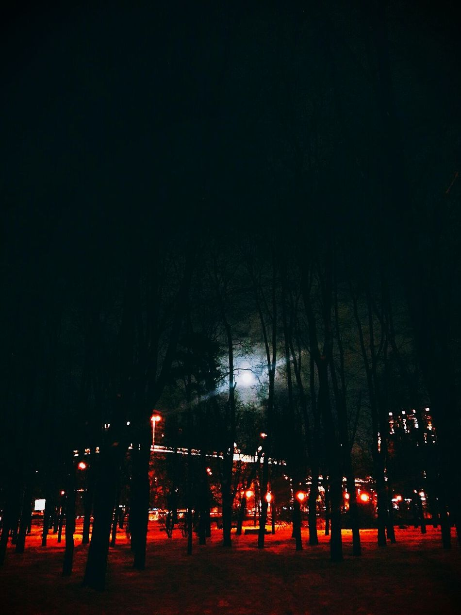 Night Sky Illuminated Outdoors No People Star - Space Full Moon Night  Abstract Lighting Night Colors City Night Citiscape  Wintertime
