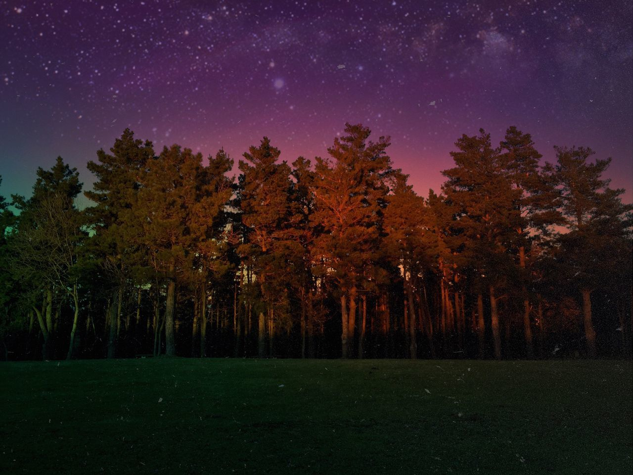 The Great Outdoors - 2017 EyeEm Awards Tree Nature Night Beauty In Nature Tranquility Star - Space Tranquil Scene Scenics Majestic No People Landscape Growth Outdoors Autumn Forest Sky Astronomy Starry Space Constellation Sunset Colors Light And Shadow Nature instagram: @ismael_j.s Place Of Heart Place Of Heart