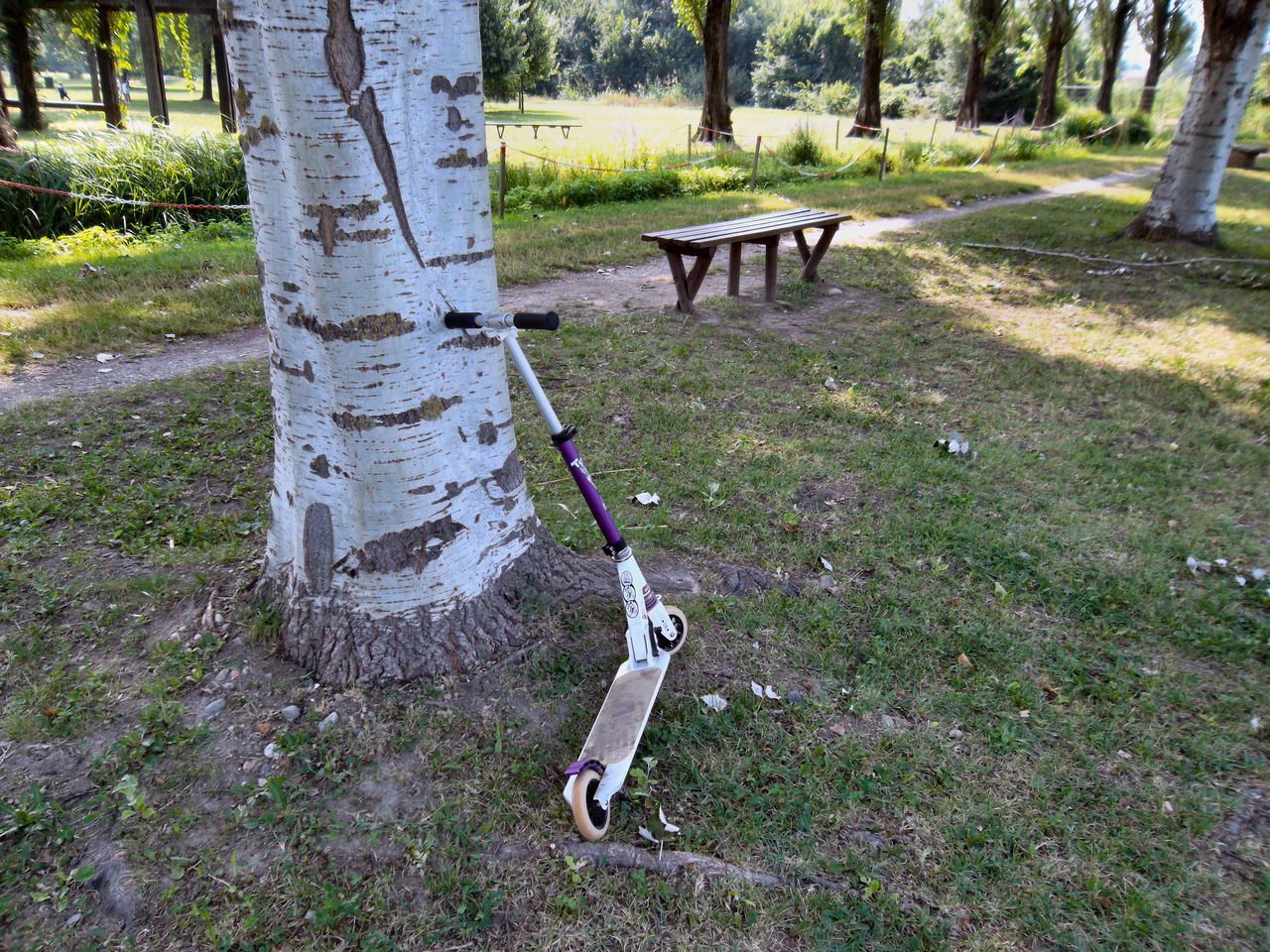 Parco Centenario Absence Day Empty Game Games Area Grass Green Color Growth Nature No People Outdoors Parco Centenario Parking Space Plant Pusch Scooter
