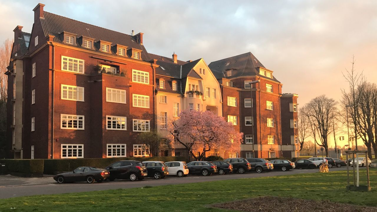 Architecture Building Exterior Built Structure Tree City Sky Grass Outdoors Car No People Cloud - Sky Day Cherry Blossoms Cherry Tree Cherry Blossom Sunset Silhouettes Spring Has Sprung Sunset_collection Sunset_captures
